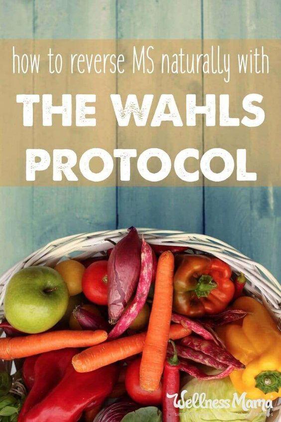 Wahls Protocol Menu