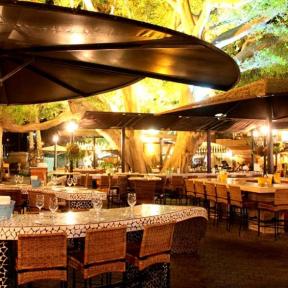 Best Tel Aviv Restaurants
